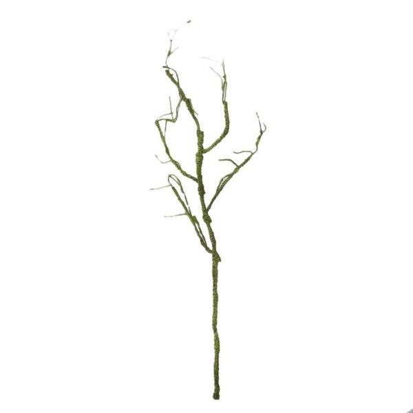 Декоративно цвете Корен 77022396