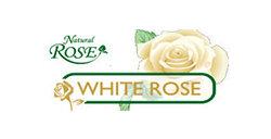 WHITE ROSE Изображение