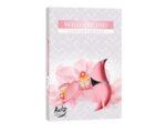 Ароматизирани чаени свещи, 6 бр. - дива орхидея