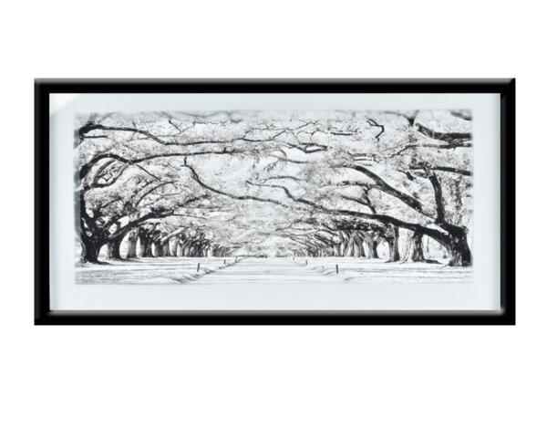 """Картина """"Спокойна алея"""" - 43 х 83 cm"""