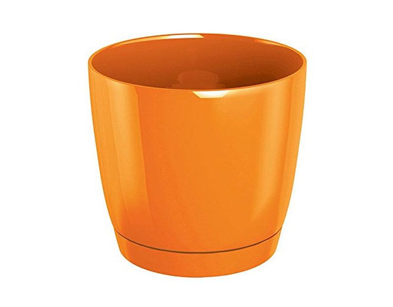 Саксия Coubi - оранжева