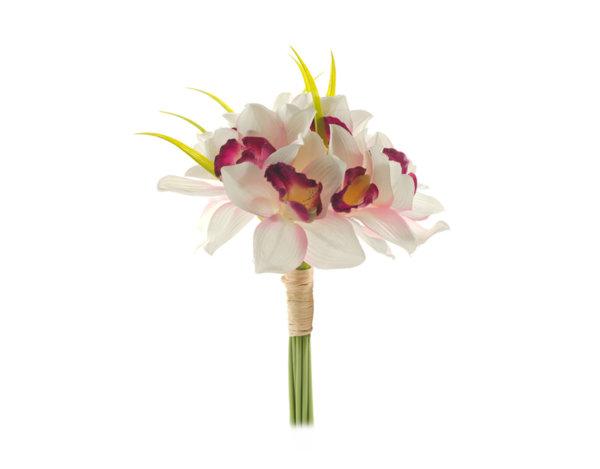 Декоративно цвете - до 60 cm, различни видове