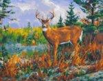 Рисуване по номера - Благороден елен