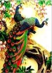 Диамантен гоблен Пъстри пауни - 40х50, квадратни мъниста