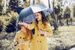 Чадърчета