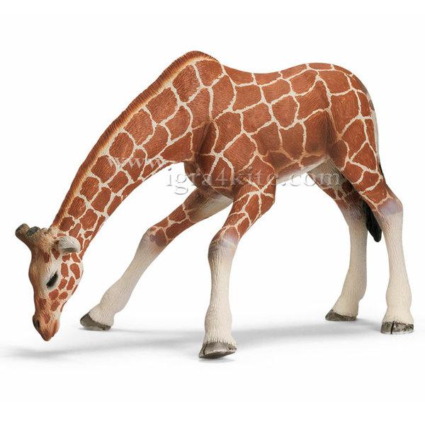 Schleich - Жираф женски 14390