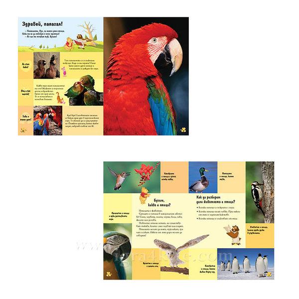 Детска енциклопедия Мечо Пух Птиците 4+