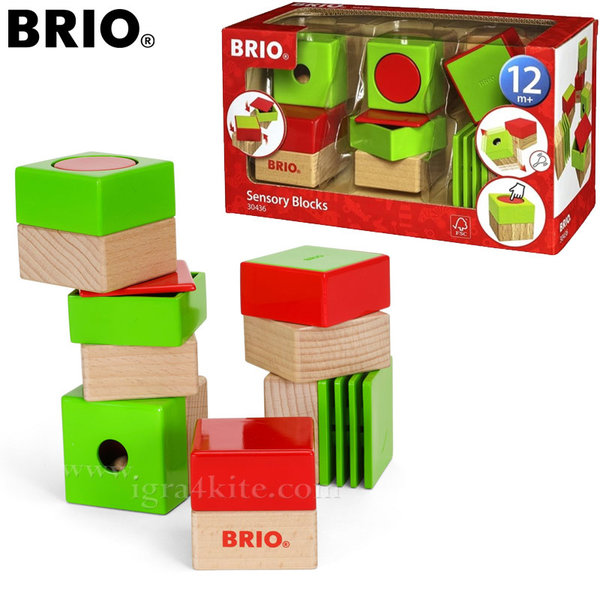 Brio - Дървени кубчета Sensory Blocks 30436