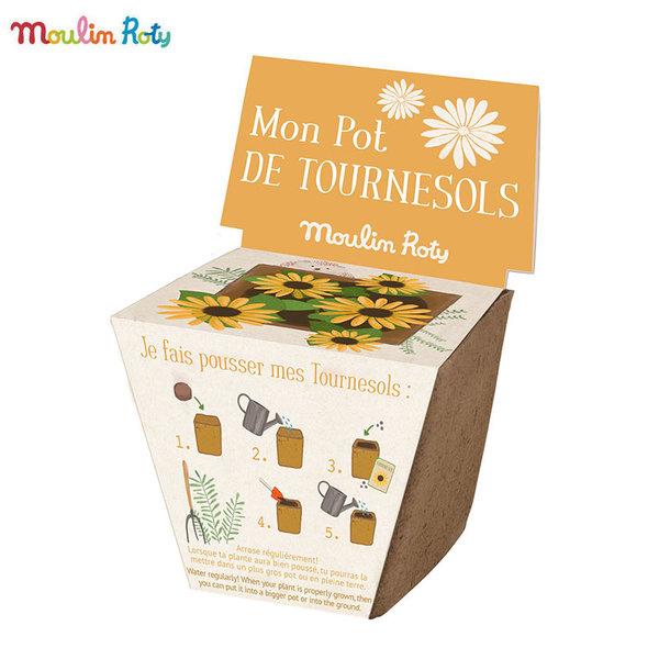 Moulin Roty Мини саксия със слънчогледови семена 712379
