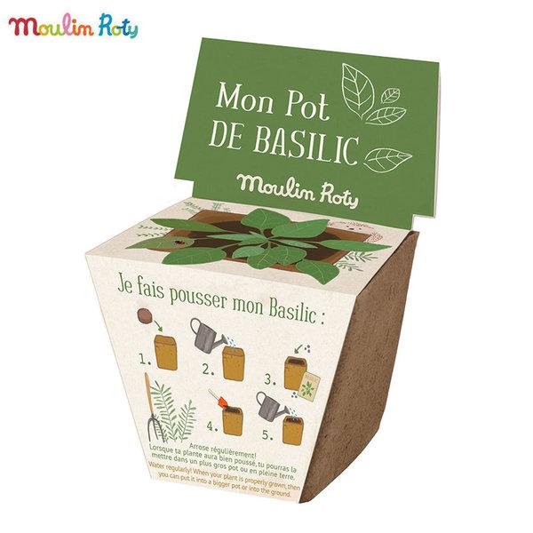 Moulin Roty Мини саксия със семена босилек 712381