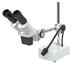 Стерео микроскопи Изображение