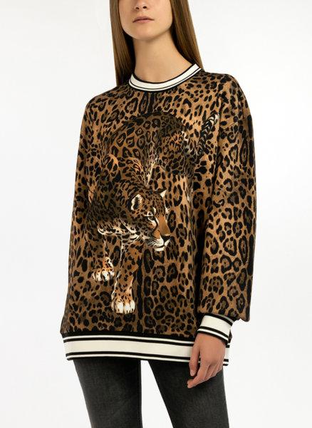 Суетшърт с леопардов десен Dolce&Gabbana