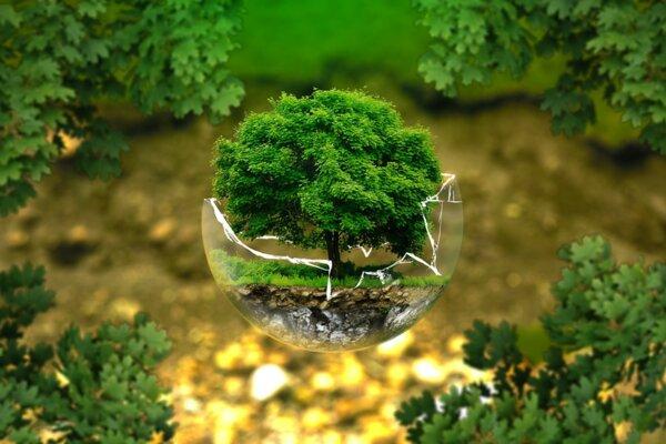Как да бъдем екологични?