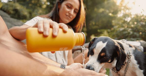 Различните видове бутилки за вода и коя е най-подходящата, за да бъдете винаги хидратирани