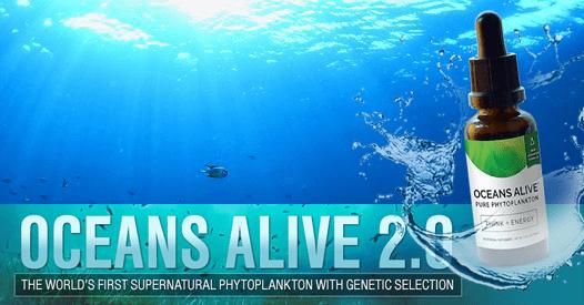Фитопланктон Най–Доброто Гориво За Живота