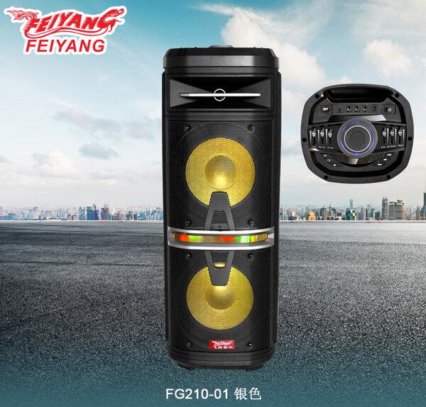 Feiyang Temeisheng® FG210 0 Мощна Караоке тонколона с два 10 инчови говорителя