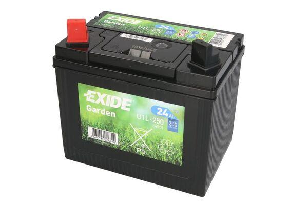 EXIDE 24AH 250A L+