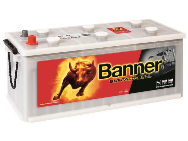 BANNER 180AH 950A BUFFALO BULL1