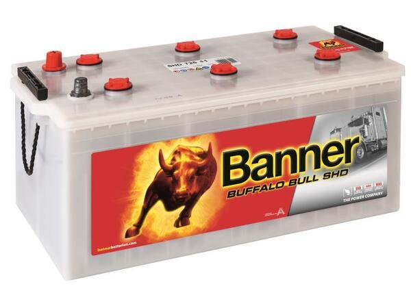 BANNER 225AH 1050A BUFFALO BULL