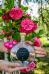 Natural floral water obtained by direct distillation of fresh hand-picked blossoms of Rosa Damascena