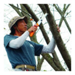 Сгъваем подрязващ трион Silky, Gomboy 300 - 8