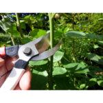 Лозарски ножици Silky, Okatsune 104