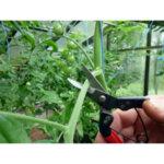 Лозарска ножица за подрязване Silky, Okatsune 307