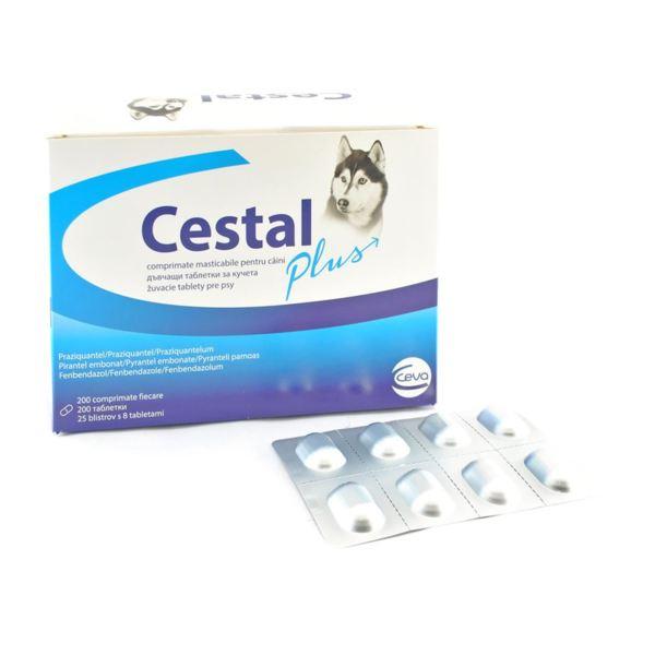 CESTAL PLUS - Дъвчащи овкусени таблетки