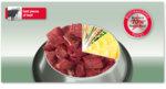 Platinum Adult Beef + Potato