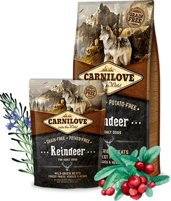 CARNILOVE Reindeer