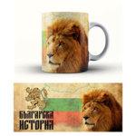 Чаша България 3mch6