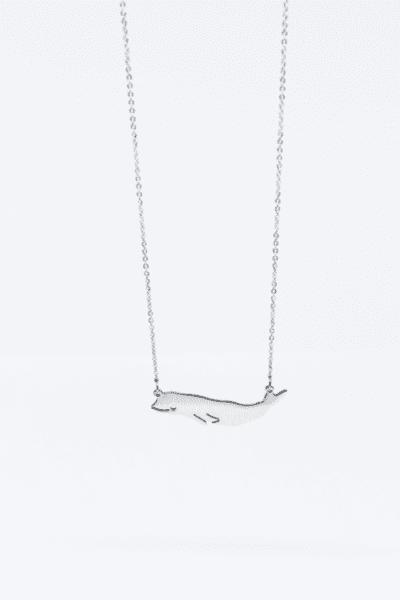Колие Белуга (Delphinapterus leucas)