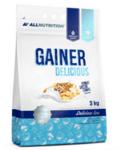 Гейнер за Мускулна Маса Gainer Delicious AllNutrition 3000 грама