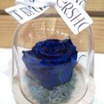 Кадифе В синьо