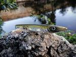 Примамка FISHUS ESPETIT Floating, 12,5 cm