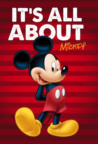 Одеяло Mickey (55888)