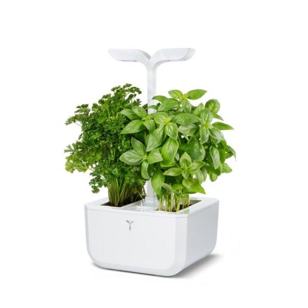 Настолна домашна градинка Exky® CLASSIC Garden - цвят бял