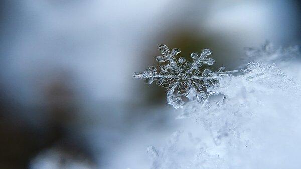 30 идеи за по-книжна зима