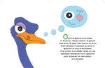 """""""Смешни факти за животните"""" - птиците"""