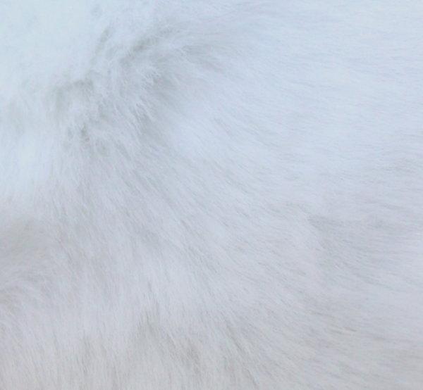 Еко кожа с косъм - бяла