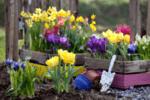 Подгответе градината за пролетта