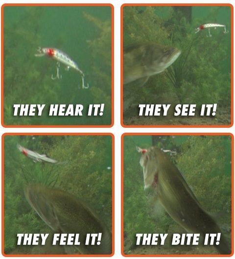 Воблер - Шарено вибрираща примамка за риба