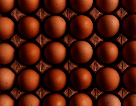 Яйца harmonica кора 30 бр.