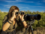 Olympus Binoculars 8x40 S incl. Case & Strap