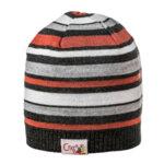 Детска шапка пролет есен за момче 674013