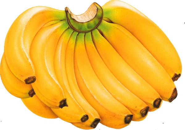 Пресни плодове