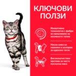 Hill's Science Plan Adult Hairball - Суха храна за котки за намаляване на космените топки, 1-6 год.