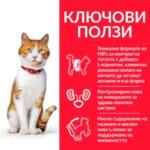 Hill's Science Plan Sterilised Cat Young Adult - Пълноценна суха храна с пилешко за млади кастрирани котки от 6 месеца до 6 години.