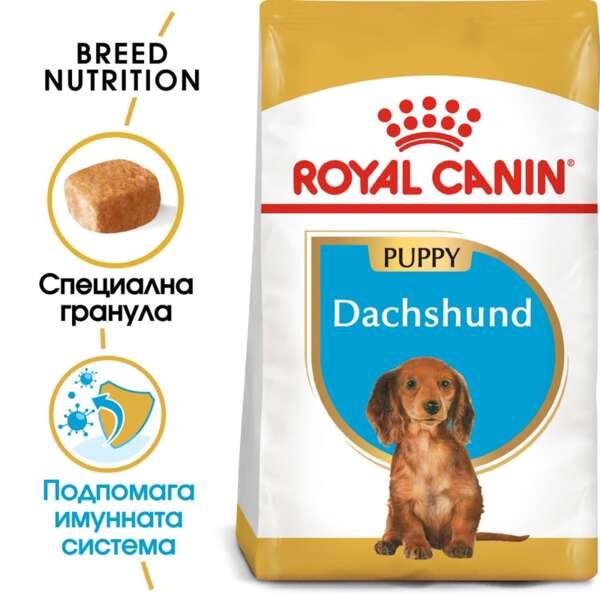 ROYAL CANIN® DACHSHUND PUPPY 1.5 кг. - пълноценна суха храна за подрастващи дакели от 2- до 10-месечна възраст.