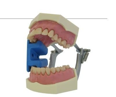 37.258.40 GAG, MOUTH MOUTH GAGS (2 PIECES),BLUE,малка, SILICONE, 4,5 X 3,2 X 2,85 CM ретрактор силиконов